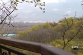Зеленые зоны Киева